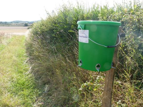 PERDIX Farmland Bird Feeder mounted on post along hedgerow