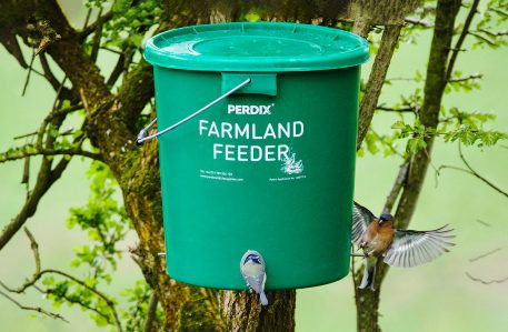 Perdix Farmland Feeder