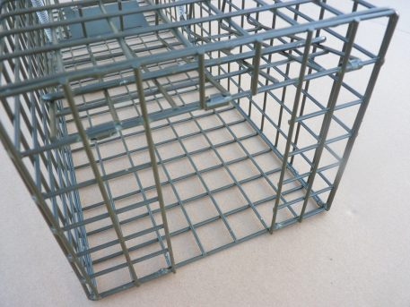 Non-target excluder on PERDIX Grey Squirrel cage trap