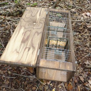 Perdix Grey squirrel trapping tunnel set with two KORO large rodent traps