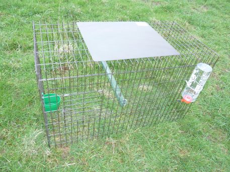 Perdix Larsen Decoy Cage for Crows and Magpies