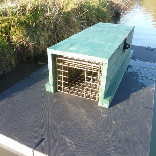 PERDIX Mink raft in river with set mink trap