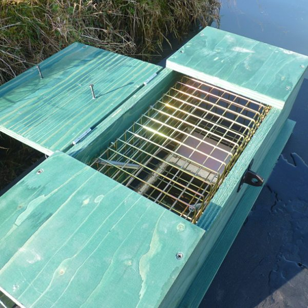 PERDIX Mink Raft with inspection hatch open checking cage trap