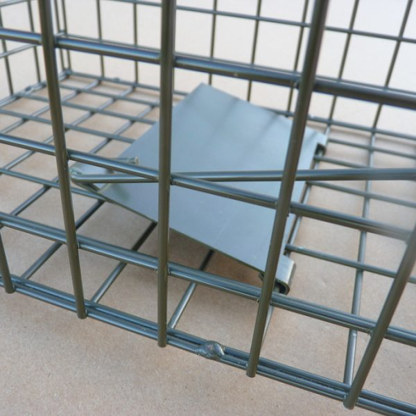 Treadle plate in set position on PERDIX Mink cage trap.