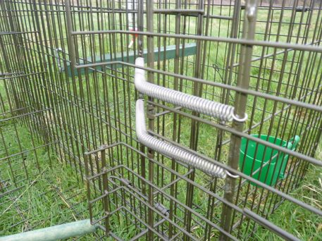 Two Stainless Steel extension springs on Perdix Larsen Trap (Side-entry compartment)