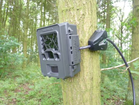 Mini Python Cable Locking Reconyx Camera to a Tree