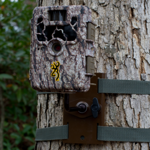 Tree mount for browning trail cameras