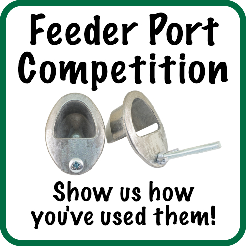 Feeder Port Competition